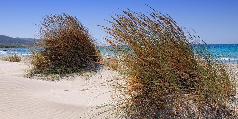 Le Dune di Campana Hotel Abamar Pula